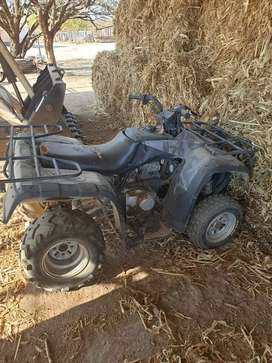 Hawk Quad bike