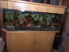 Fish tank with cabinet and pump