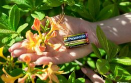 Батарейки Panasonic Alkaline 1,5 V LR14 размер C комплект 2 штуки