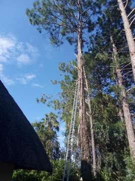 Magaliesburg Tree Felling and Grass Cutting/ Boomsloping Magaliesburg