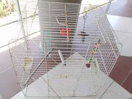 Bird cage ( no plastic base)