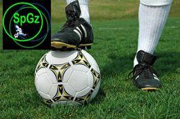 Спорт-10 Газон с живучестью 8-10лет жаростойкая низкая трава семена