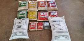 Quality Maize products