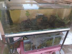 4ft fish tank with a 100l sump and lots of extras