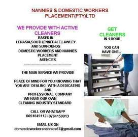 Nannies and Domestic workers placement