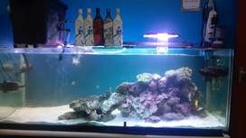 Marine tank complete for sale