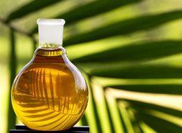 Пальмовый олеин РДО, для фритюра, жарки, начинки, кондитерских изделий
