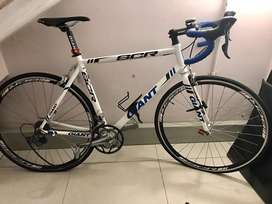 Giant SCR Racer Large