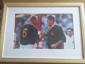 Rugby World Cup Prints in Pine Wooden Frames (1995 Winners Memorabili)