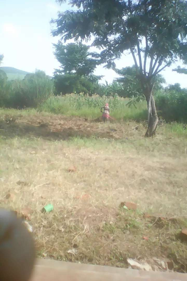 Land for sale and rent in and around kaliro 0