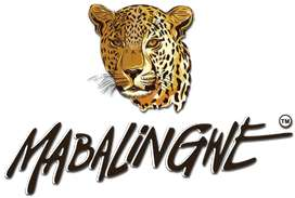 Mabalingwe stunning 6 Sleeper to Rent - 16 to 23 April 2021