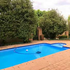 Professional swimming pool maintenance