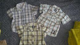 H&M koszule z krótkim rękawem roz. 80 i 86