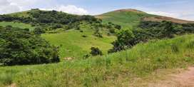 Land for sale in Glendale