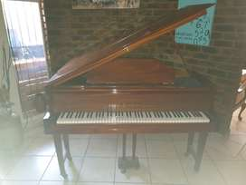 Boyd-London Baby-grand piano