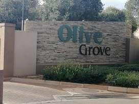 Townhouse to rent in Olive Grove