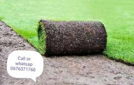 Roll on grass supply and installation
