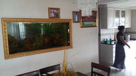 Fish tank with stand pump