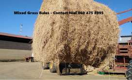 Bales for sale – Teff, Lucerne, Eragrostis, Grass