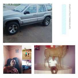 It's a Jeep Grand Cherokee with laxus angine v8