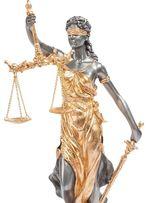 Юрист. Адвокат.