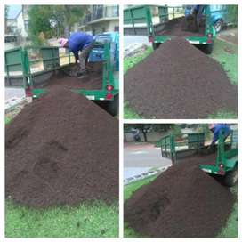 Potting soil for herbs and vegetables planting