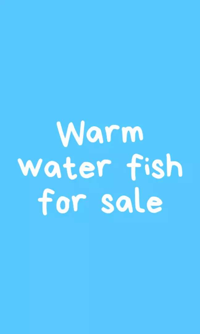Warm water fish for sale 0