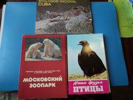 набор открыток с животными и птицами