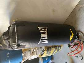 Everlast Medium Punching Boxing Bag