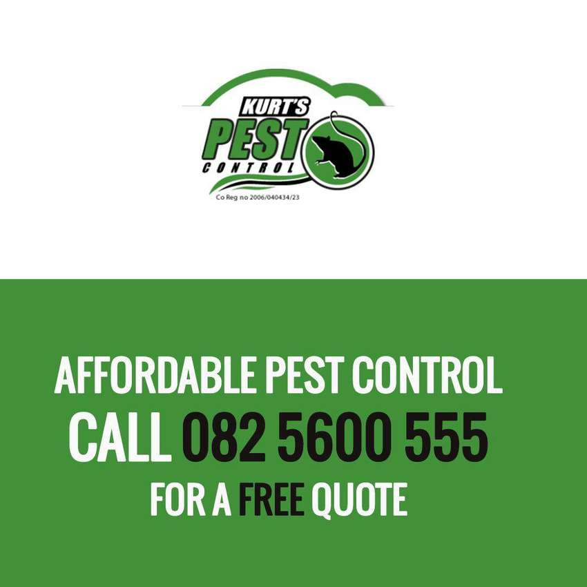 Affordable pest control 0