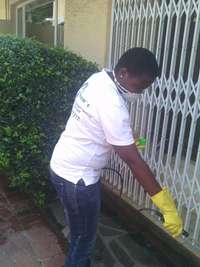 Image of Pest Services and Cleaning