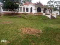 Specious 4br own comp on 1acre rental bungalow in secure Nyali area 0
