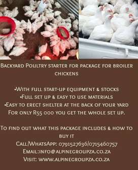 Backyard Poultry Start-up Package