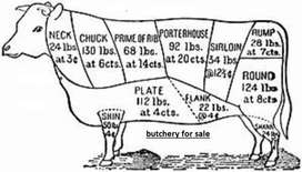 Well known butchery near Centurion for sale