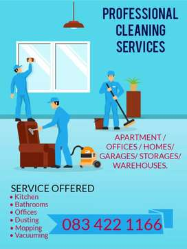 Cleaning services done professionally