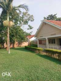 Kololo 4 bedroomed house for rent at $3,500 0