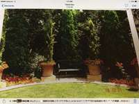 Image of Gardening, Landscaping, Site, Bush Clearing and Grass Cutting solution
