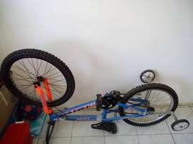 Totem boys bicycle with training wheels
