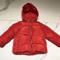 Kurtka zimowa, Zara, 116