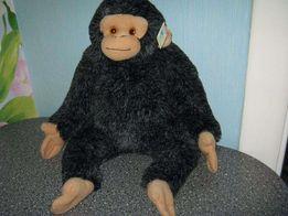 Обезьянка Шимпанзе