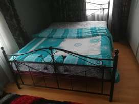 Iron   bed + matress