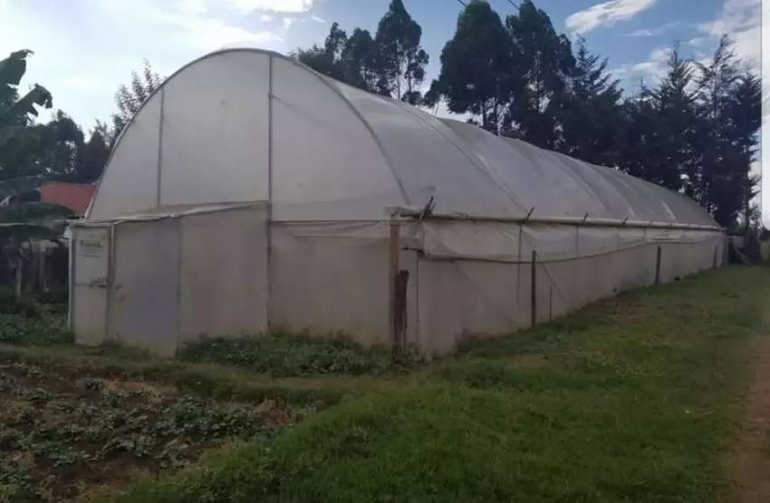 Green House To Let Earn 200k 0