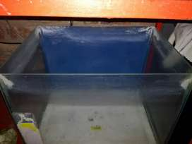50 L Fish Tanks