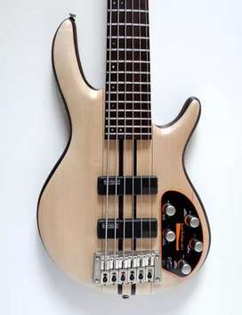 A6, 6 String Bass Guitar, Vox Amplug2, Promethean 20 watt bass amp