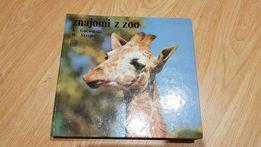 Znajomi z zoo - Gucwiński i Strojny