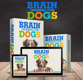 Brain training for dogs(read description)