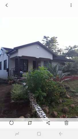 Specious 3 bedroom house available for rent immediately at amanzimtoti