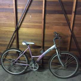 Female mountain bicycle