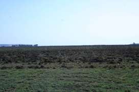 23 hectares of vacant land