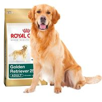 Karma dla psa Royal Canin Golden Retriever Adult 12kg OKAZJA!!!